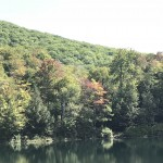 Fall Foliage Report: September 19 - September 25