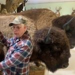 A taxidermy wonderland: The Wildlife Sports and Educational Museum in Fulton County